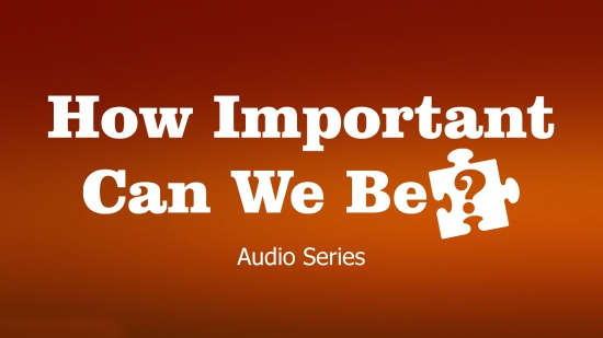 How Important Can We Be? - Audio Series